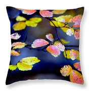 Fall Color Change Throw Pillow