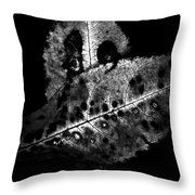 Fall Color In Black And White Throw Pillow