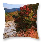 Fall Color In The White Mountains Throw Pillow