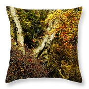 Fall Color Wall Art Landscape Throw Pillow