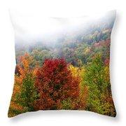 Fall Color Panoramic Throw Pillow