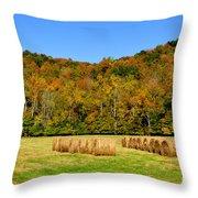 Fall Color Randolph County West Virginia Throw Pillow