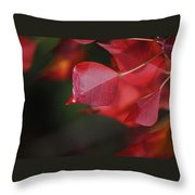 Fall Color Red Throw Pillow