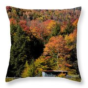 Fall Color West Virginia Throw Pillow