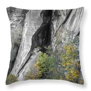 Fall Colors Chimney Rock State Park Throw Pillow