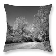 Fall Colors In Black And White Throw Pillow