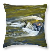 Fall Colors In River Rapids Throw Pillow