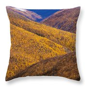 Fall Colours Along Top Of The World Throw Pillow