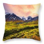 Fall Colours And Auriol Range Throw Pillow