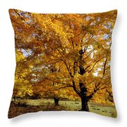Fall Colours In Eastern Townships Throw Pillow