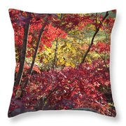 Fall Comes To New England Throw Pillow