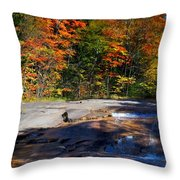 Fall Falls Throw Pillow