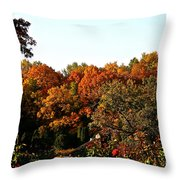 Fall Foliage And Roses Throw Pillow