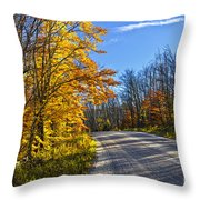 Fall Forest Road Throw Pillow by Elena Elisseeva
