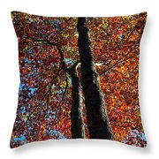 Fall From Above Throw Pillow