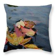 Fall Gathering Throw Pillow