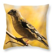 Fall Grosbeak Throw Pillow
