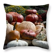 Fall Harvest Colorful Gourds 7965 Throw Pillow