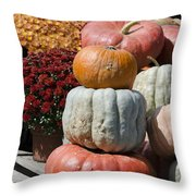 Fall Harvest Colorful Gourds 7968 Throw Pillow