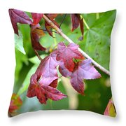 Fall Has Begun Throw Pillow