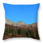 Fall In Denali Throw Pillow