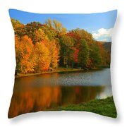 Fall In New York State Throw Pillow