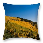 fall in Ruidoso Throw Pillow