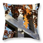 Fall In The City 3 Throw Pillow