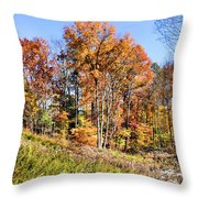 Fall In The Foothills Throw Pillow