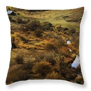 Fall In The Valley Throw Pillow