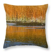 Fall In Yellowstone National Park Throw Pillow