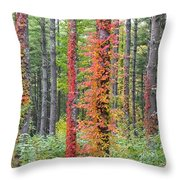 Fall Ivy On The Trees Throw Pillow