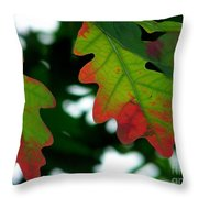 Fall L Eaves Throw Pillow