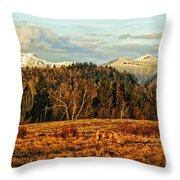 Fall Landscape-hdr Throw Pillow