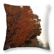 Fall Laneway Throw Pillow