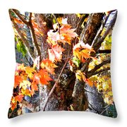 Fall Leaves 2 Throw Pillow
