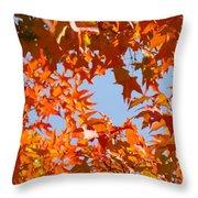 Fall Leaves Art Prints Autumn Red Orange Leaves Blue Sky Throw Pillow