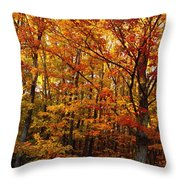 Fall Leaves On Trees Throw Pillow