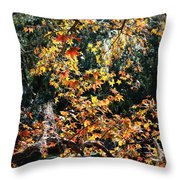 Fall Leaves Over Florida Pond Throw Pillow