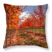 Fall Line Up Throw Pillow