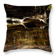 Fall Log Reflection Throw Pillow