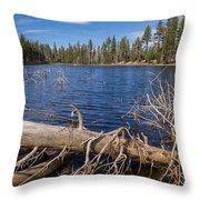 Fall Logs On Reflection Lake Throw Pillow