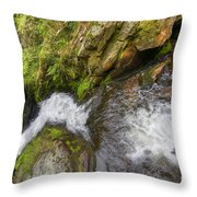 Fall Of Water Throw Pillow