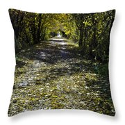 Fall On Macomb Orchard Trail Throw Pillow