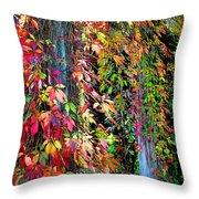 Fall Palette Throw Pillow