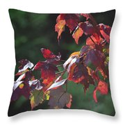 Fall Red Throw Pillow