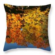 Fall Reflectionsin Michigan Throw Pillow