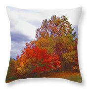Fall Retreat Throw Pillow