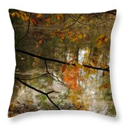 Fall River Branches Throw Pillow