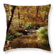 Fall River Colors Throw Pillow